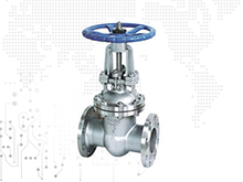 WCB Carbon Steel Globe Check Valve